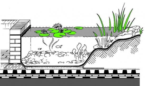 dachy zielone oczko wodne