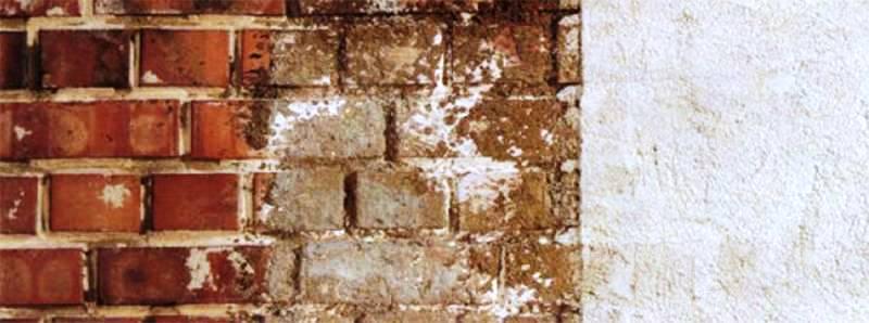 mur wykwity